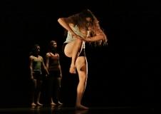movement-arts-dahm